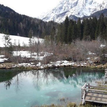 Vikend izlet – naravni rezervat Zelenci
